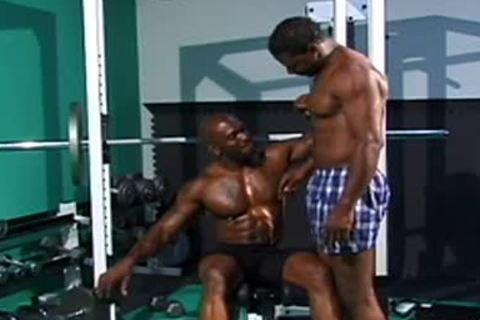 avid homo body builder pounding