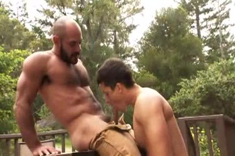hairy Muscle Bald Bear plows Jay Roberts