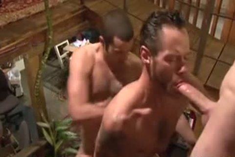 plowing Around The abode - Damon Doggs sex sperm Factory