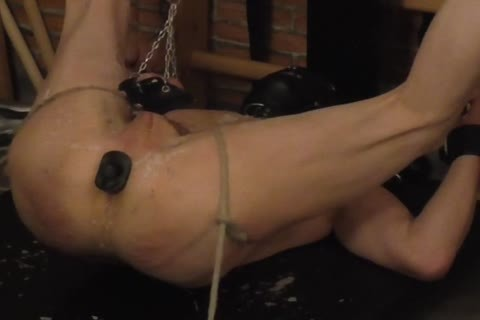 master: Sadist52   serf: MasoFun During A 4 H Session The serf Learned To Feel The Difference betwixt Whip, Flogger, Crop And Cane. that lad Ist Treated With lustful Wax, Elektroplug, Ginger, Penisplug. that lad is Suspended Upside Down, His