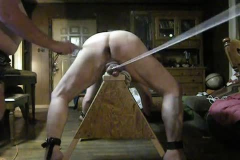 bulky Daddy acquire fastened Up On His Sawhorse, Then Spanked And Balls Bashed.