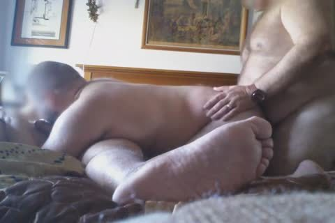 couple Daddy Bears And Me pounding
