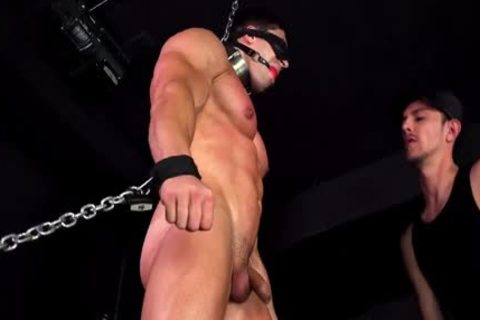 Muscle tied 2