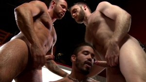 Men Over 30 - Inked Peter Marcus shows huge penis